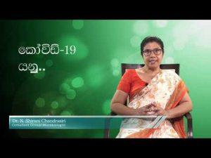 dr-shirani-chanrasiri-කොරෝනා-යනු-what-is-corona-presentation-ime-alochana-Sinhala
